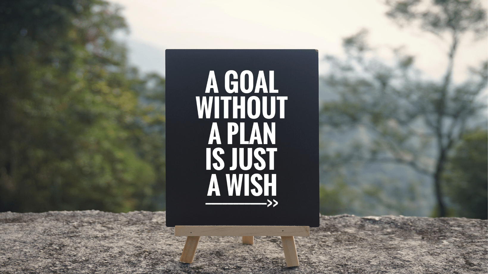 Personal-and-professional-development-plan
